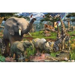Grandes Animales