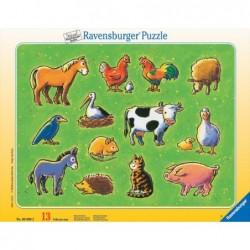 Animalitos del campo