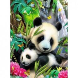Tiernos Osos Pandas
