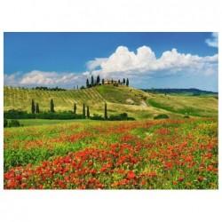 Toscana,Italia