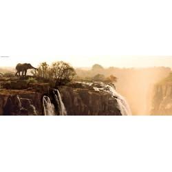 Marsel Van: Elefante