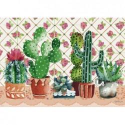 Gabila: Familia de Cactus