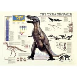 Dinosaurios: Tiranosaurio Rex