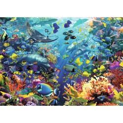 Paraíso Bajo el Agua